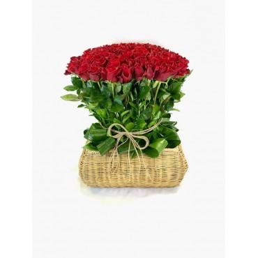 100 Shades of Roses FV-0012