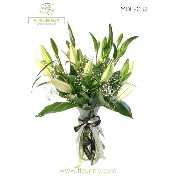 Clarity MDF-032